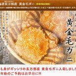 北海道毛ガニの最高峰!【長万部産 黄金毛ガニ】通販