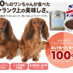 イギリス直輸入のプレミアムドッグフード通販【ネルソンズドッグフード】